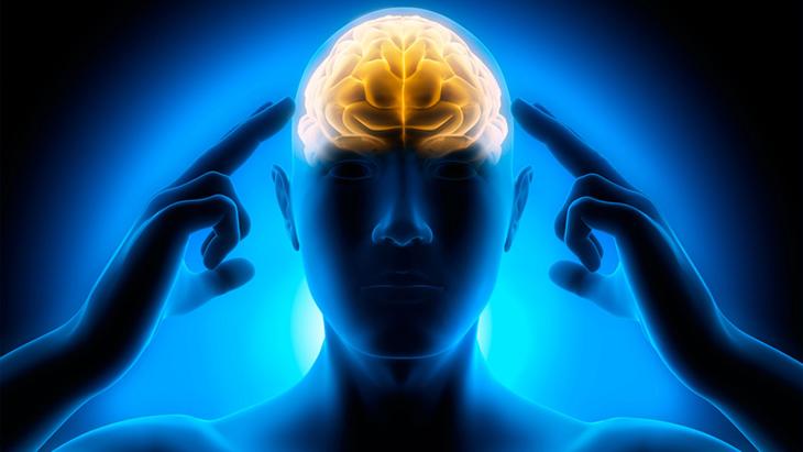 Resultado de imagem para a mente humana e seu poder de realização